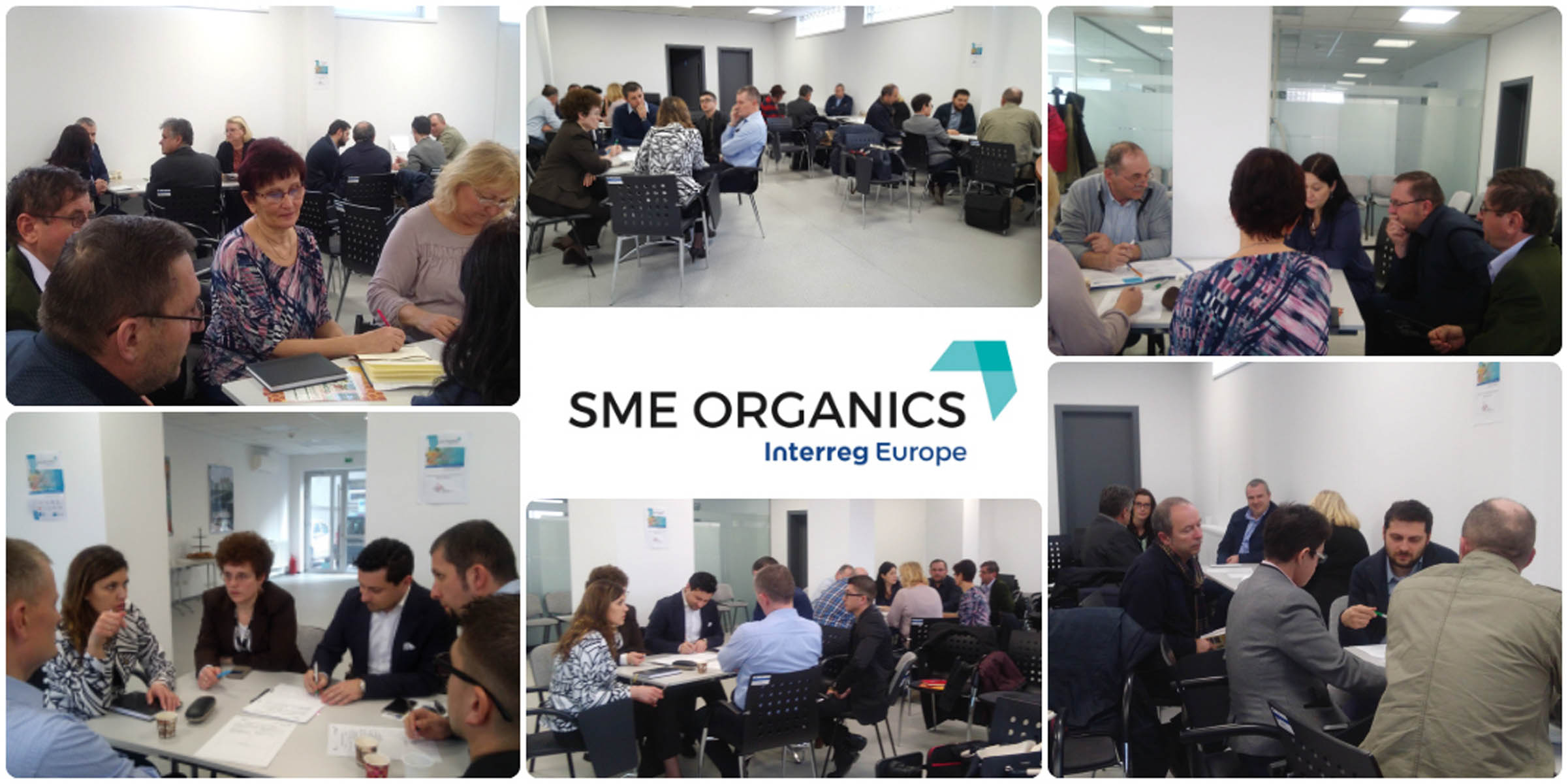 Intalnirea Comitetului Regional de Reprezentanti SME Organics acppa crisana asociatia crisana oradea (1)