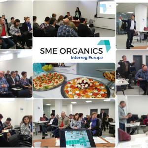 Intalnirea Comitetului Regional de Reprezentanti SME Organics acppa crisana asociatia crisana oradea (7)